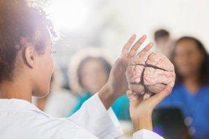 insan-beyni-hakkında-bilinmeyenler