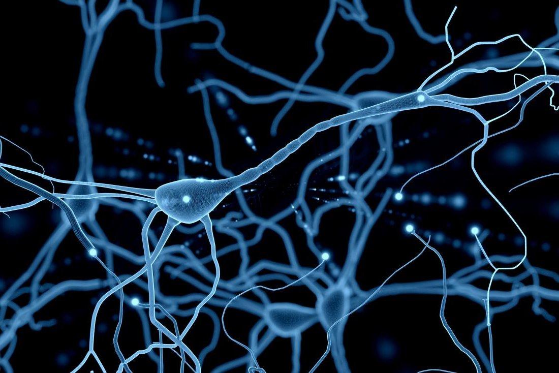 nöronlar-elektriksel-bağı