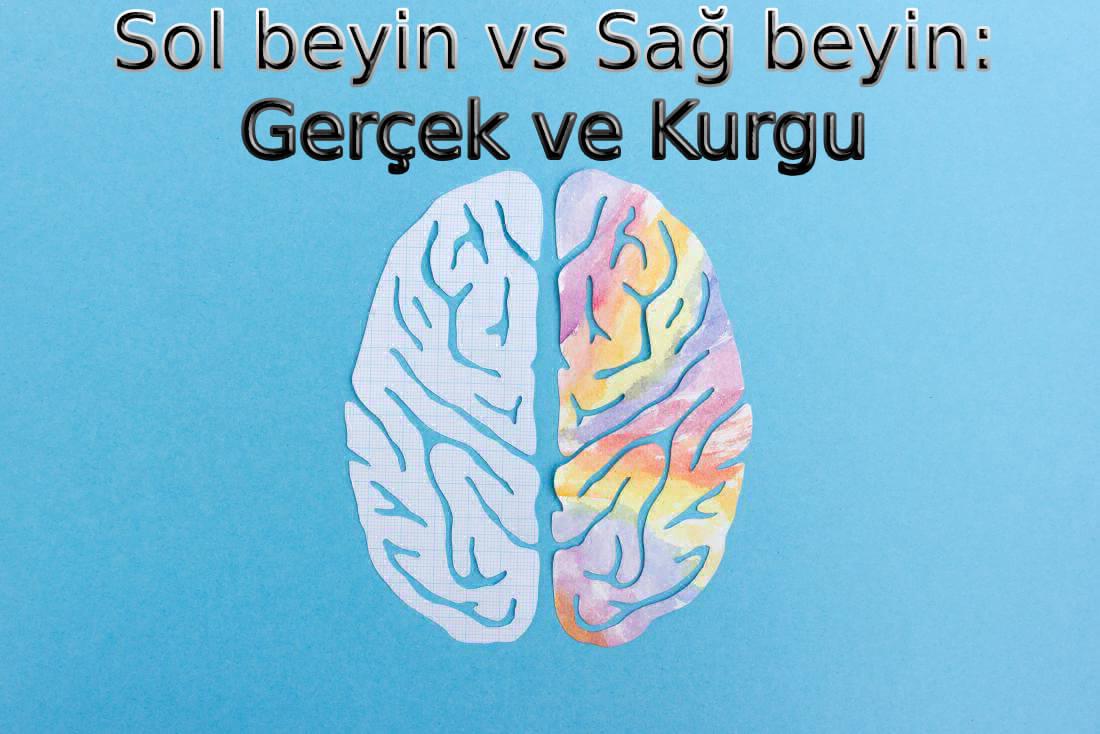 sağ-ve-sol-beyin-nedir